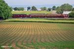 FARMING E's